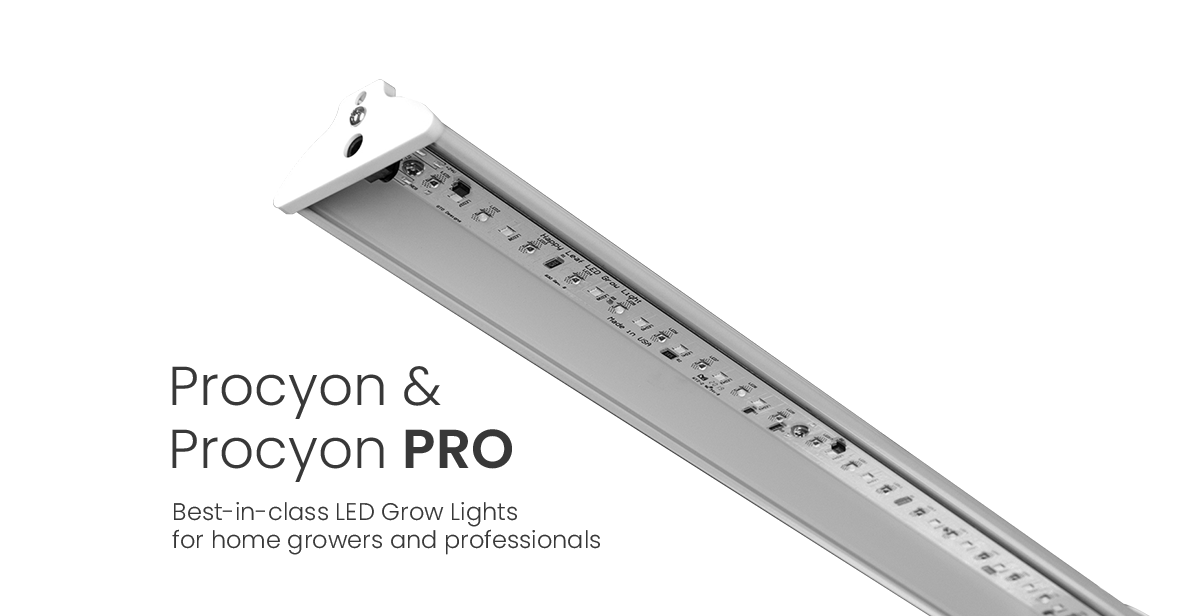 Plycon and Polycon Pro
