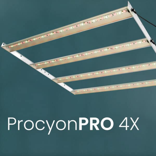 ProcyonPRO 4X