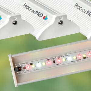 ProcyonPRO led grow lights